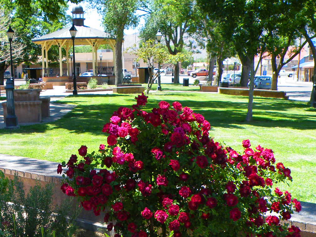 Plaza Spring