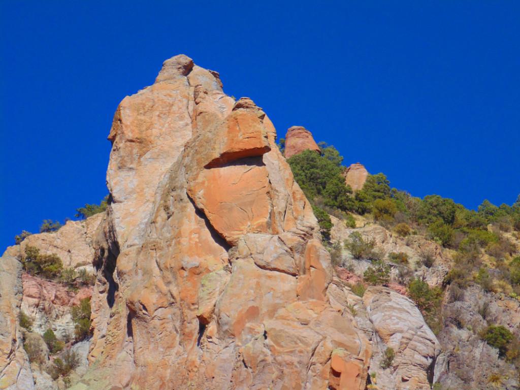 New mexico socorro county magdalena - Gila National Forest
