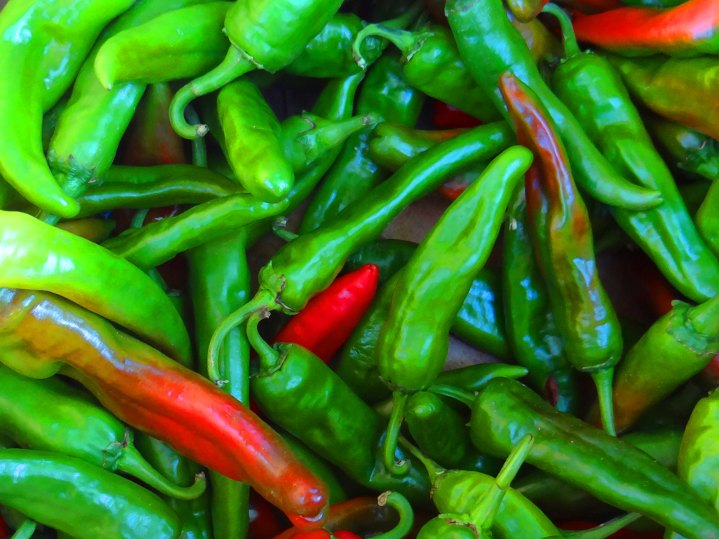 famous New Mexican Chile grown in Socorro