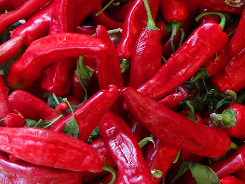 red-chile