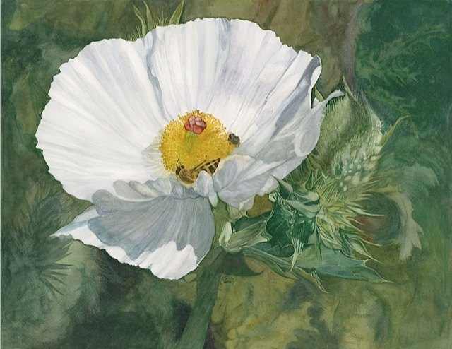 Vertu-Prickly Poppy by G.E. Grey