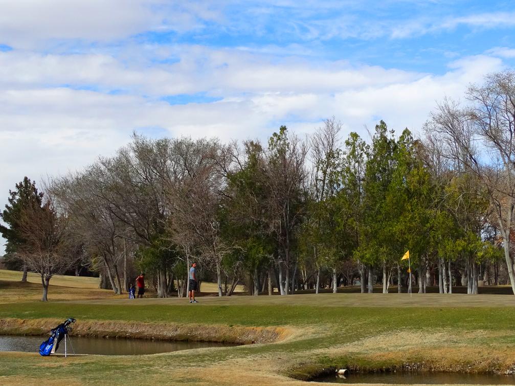 NM Tech Golf-Golfers4
