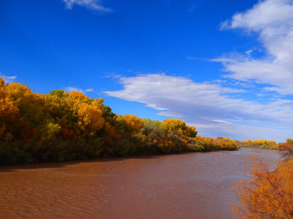 Rio Grande-Autumn