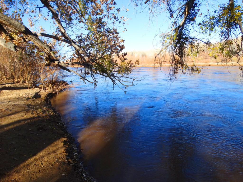 Riverine-Rio Grande1