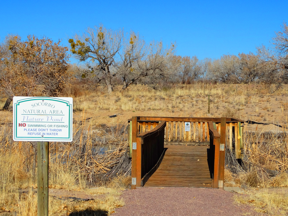 Socorro Nature Area Pond