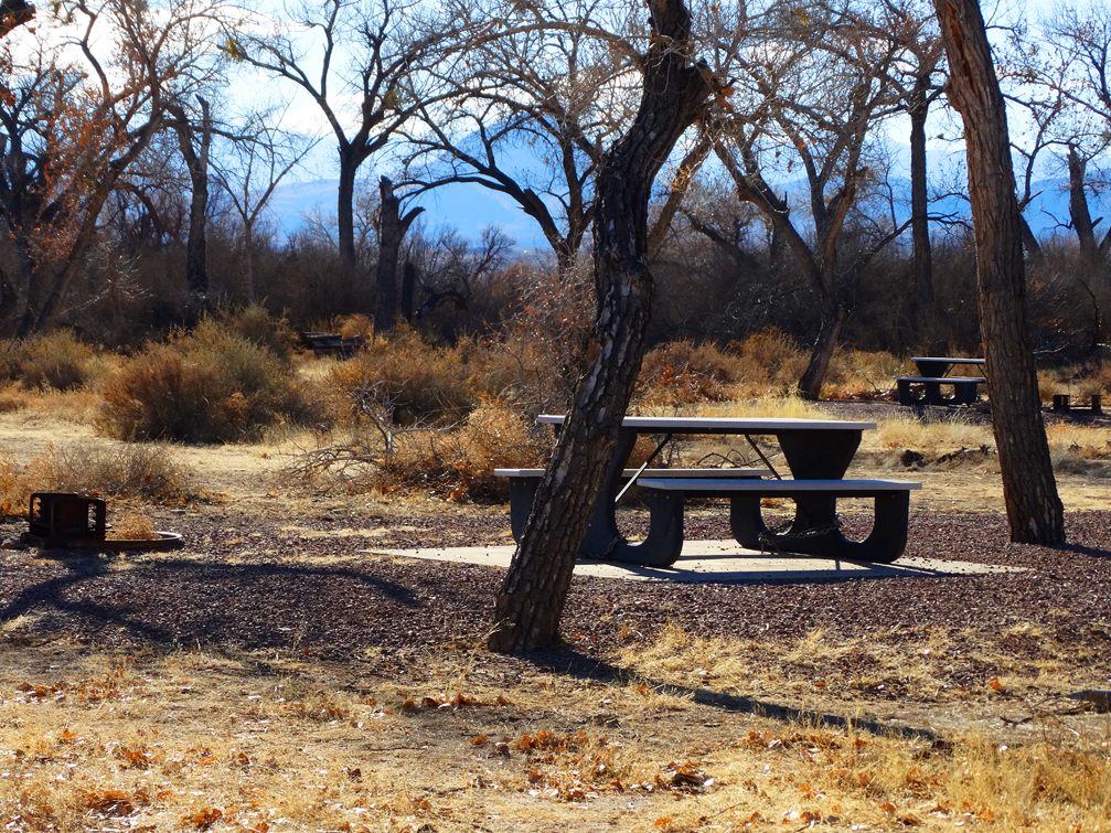 Socorro Nature Area Tables