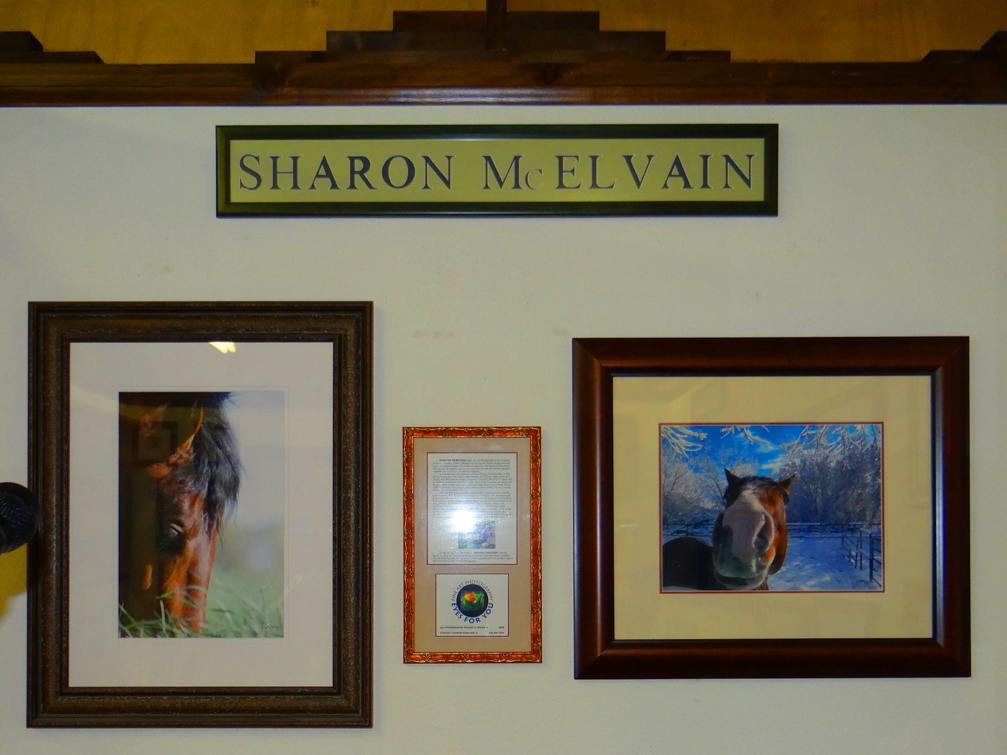 Socorro Picture Framing - Sharon McElvain